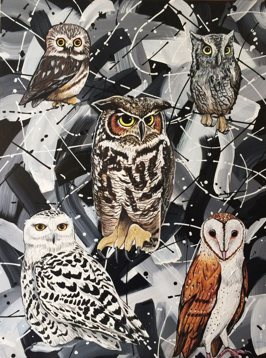 Owls with Black and White Abstract (large view)