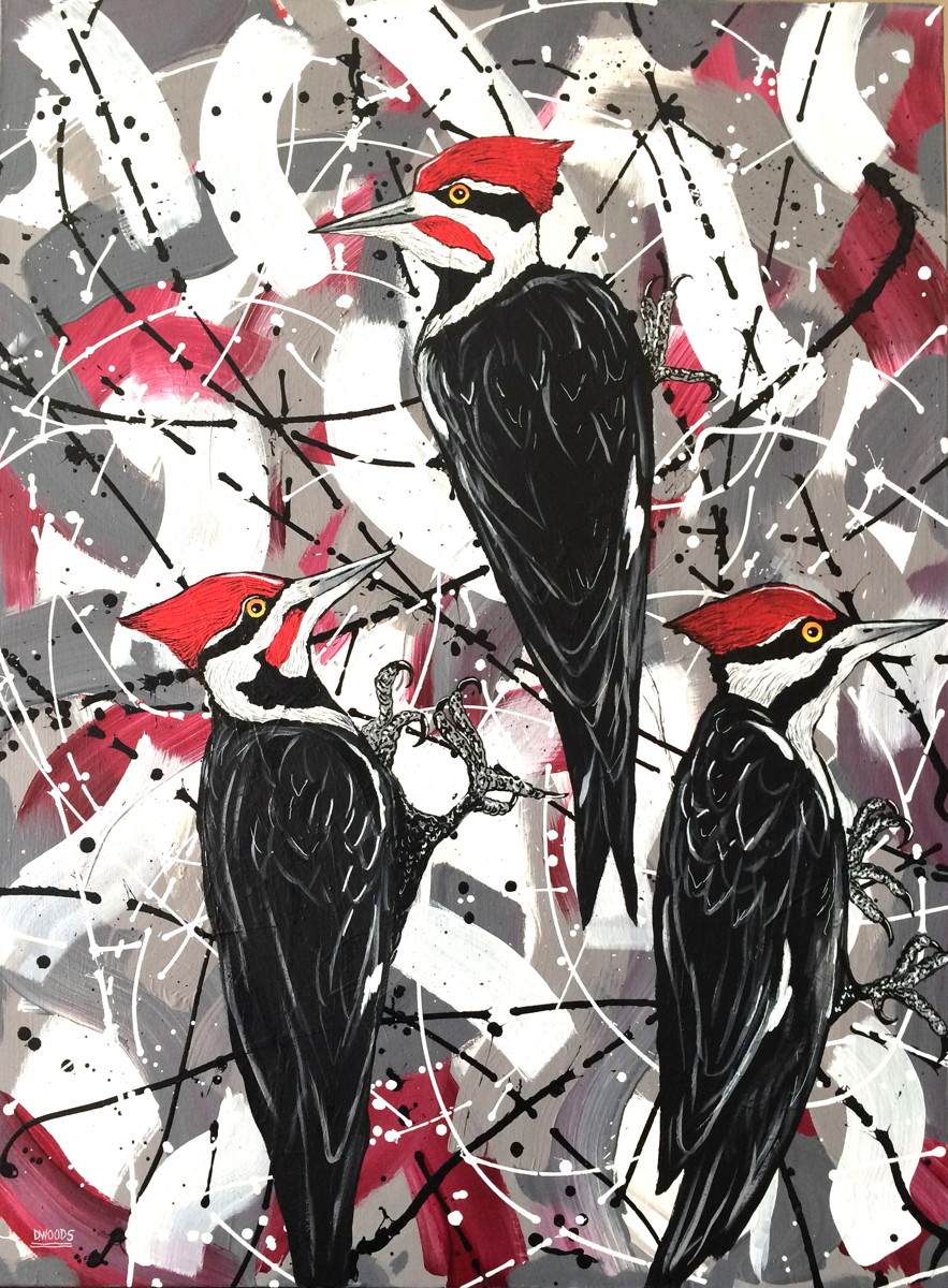 Pileated Woodpeckers with Abstract (large view)
