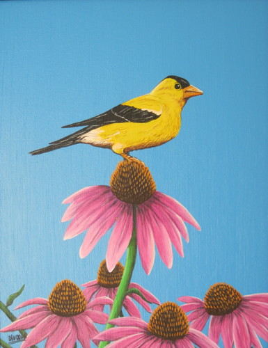 Goldfinch with Coneflowers by Donald Woods