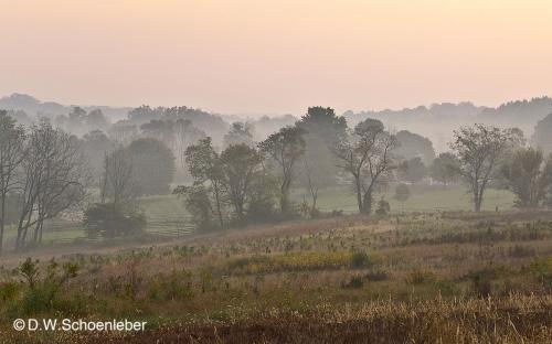 Solebury Fields