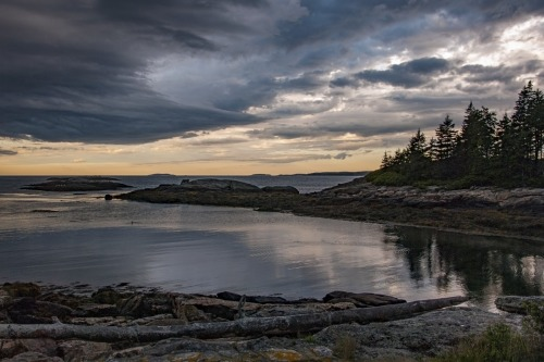 Maine Cove by Donald Schoenleber