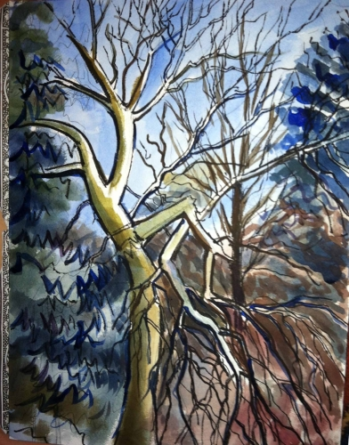 This is an acrylic of a tree (large view)