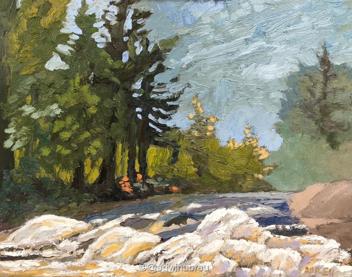 Bog Falls R (large view)