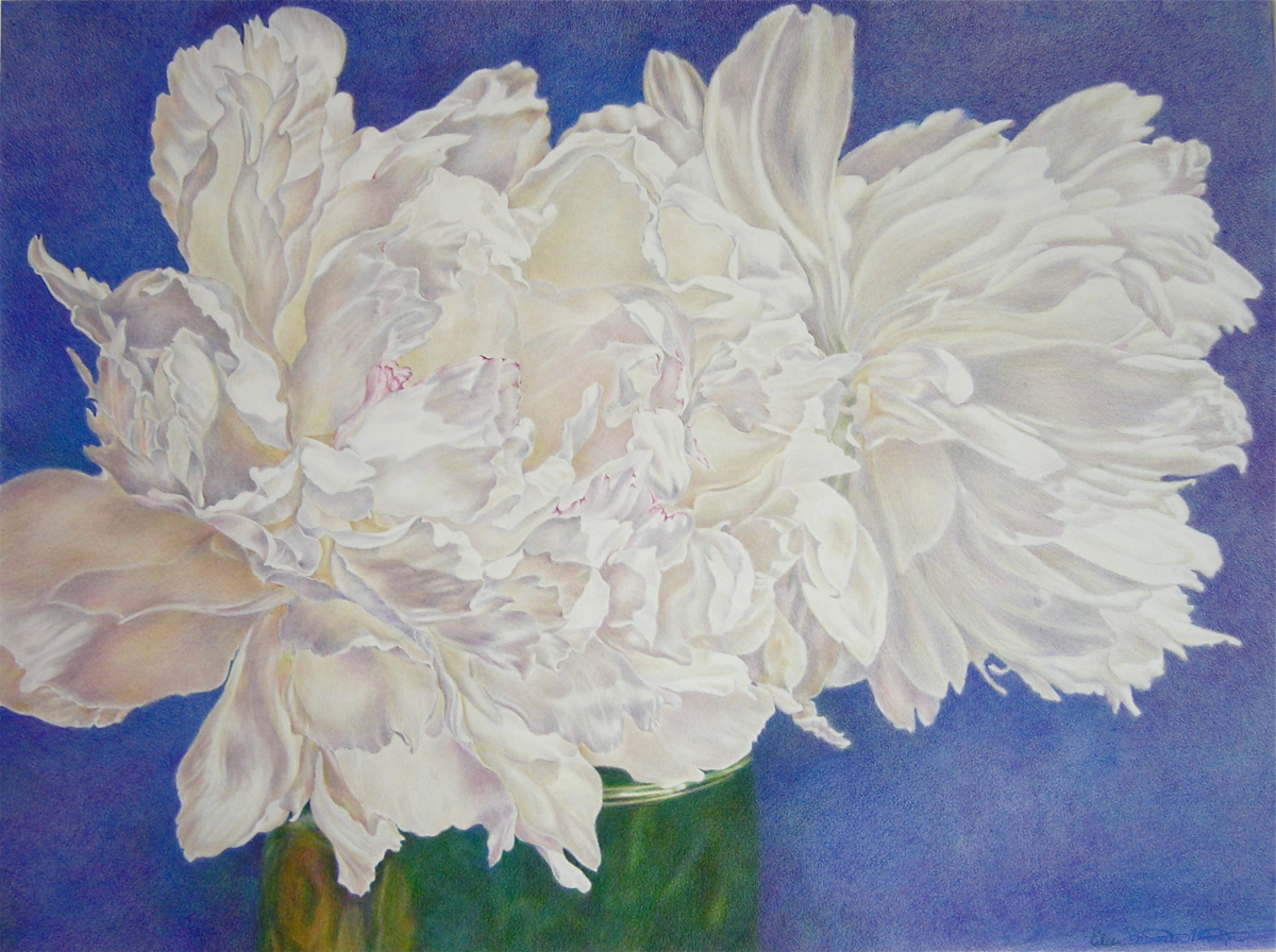Peonies (large view)