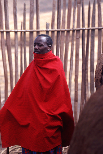 Masai man by PETER NICHOLS