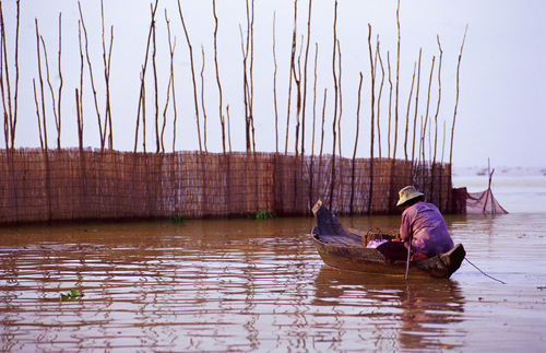 Fisherman in Cambodia