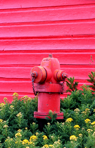 Crested Butte Hydrant