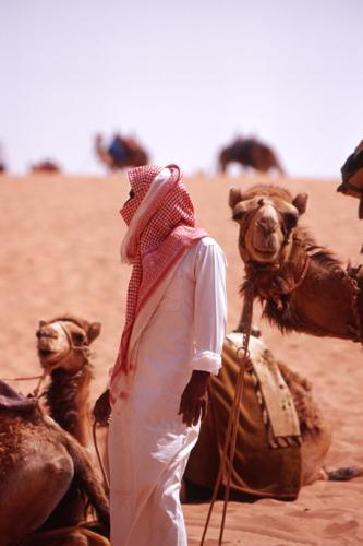 Mali camel driver