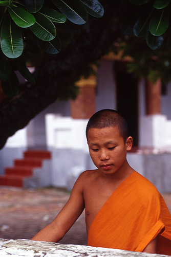 Young monk contemplating.