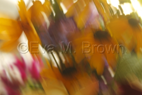 out of focus 8434 by Eva M. Brown