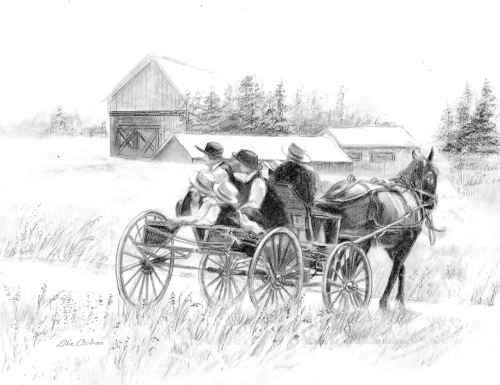 Amish In A Cart