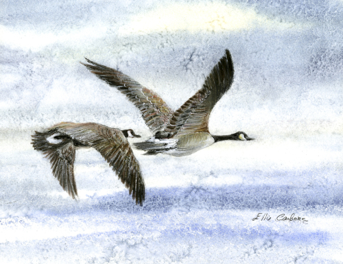 Geese In Flight by Ellie Carbone Art