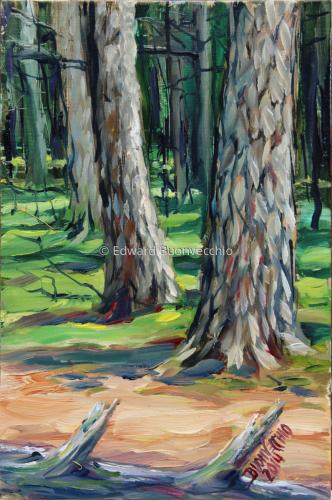 Guild Park Forest