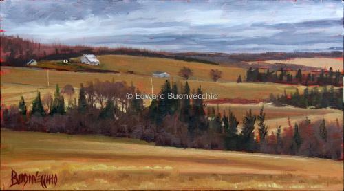 Golden Fields of Aroostook