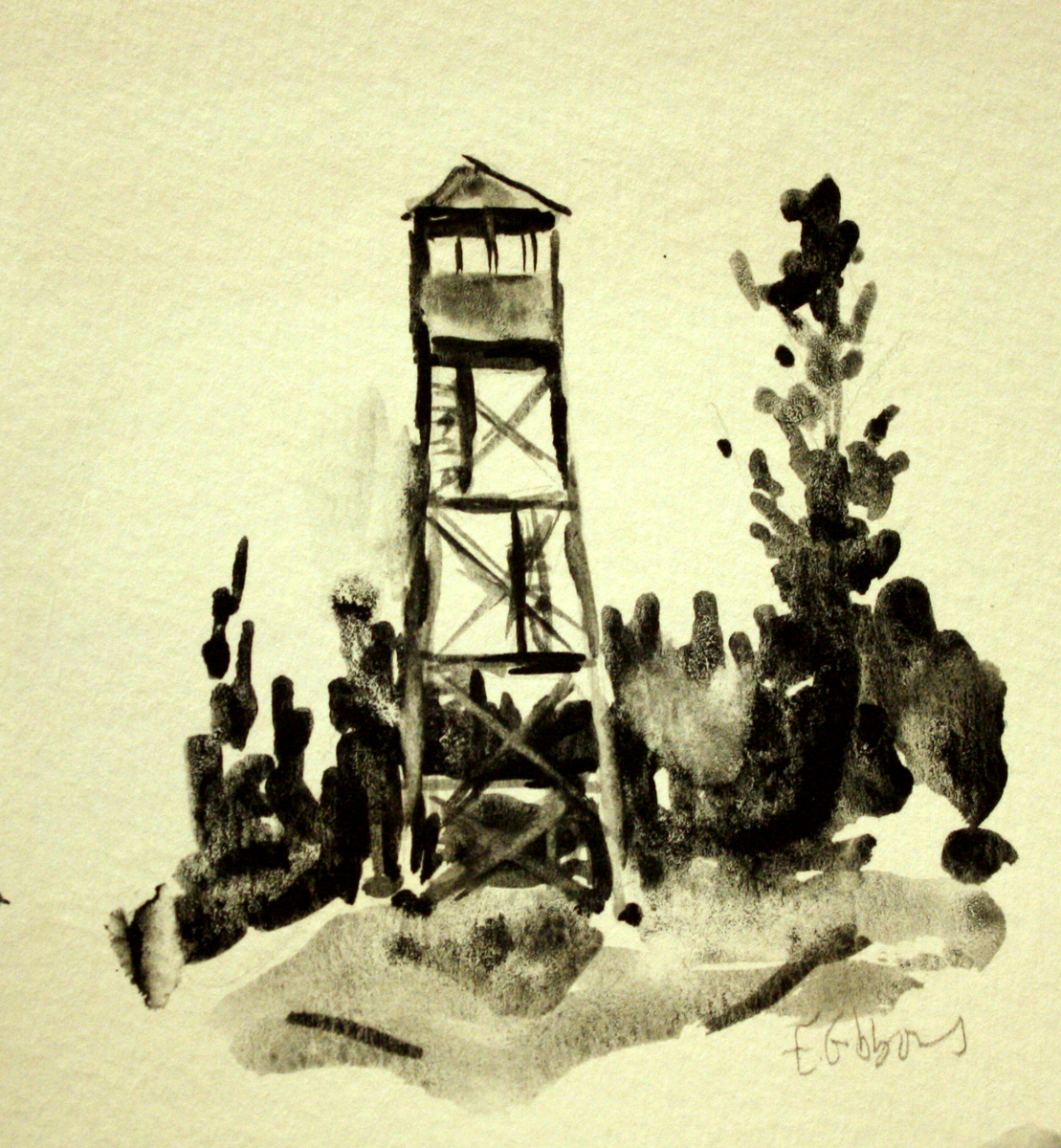 Bald Mountain Fire Tower (large view)