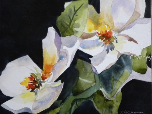 Small Magnolias