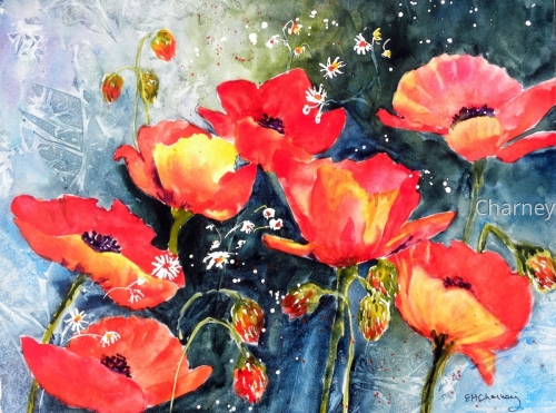 Poppies, II