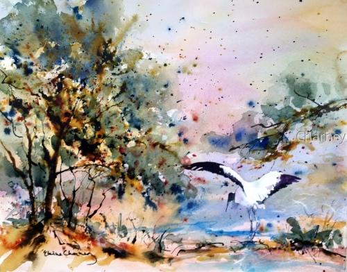 Woodland Stork