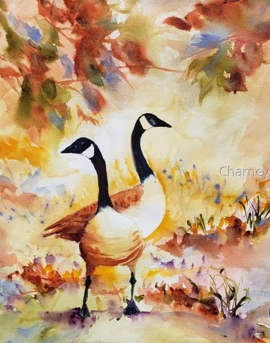 Harvest Geese