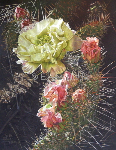 Cactus Flower (large view)