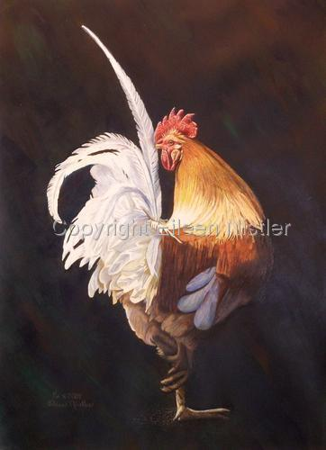 Golden Rooster (large view)