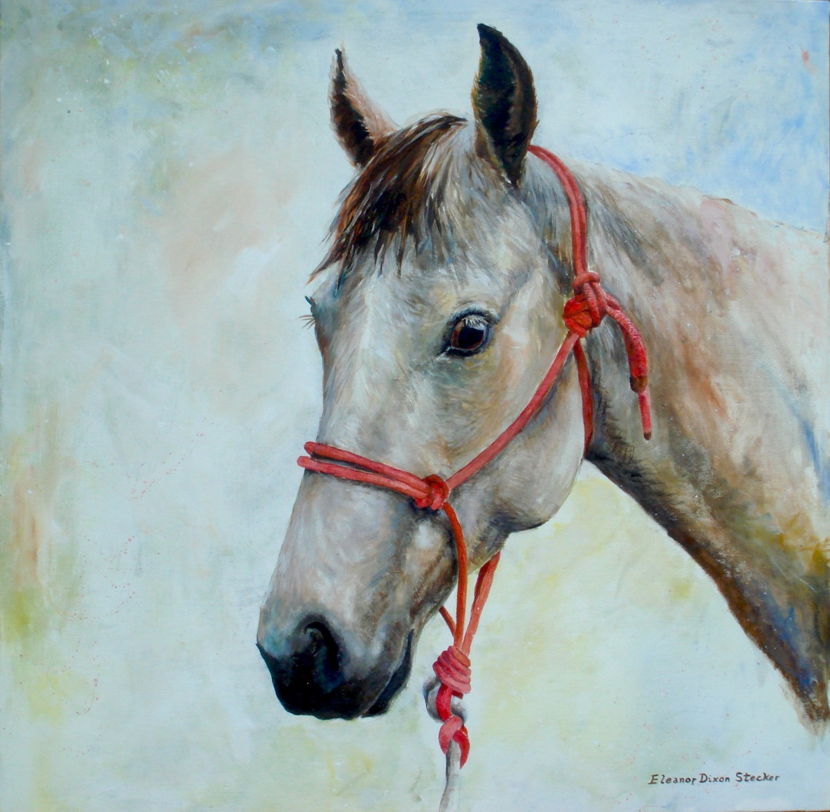 Commissioned Portrait of friend's horse (large view)