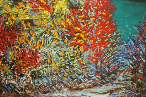 Red Sea (Diving Series)