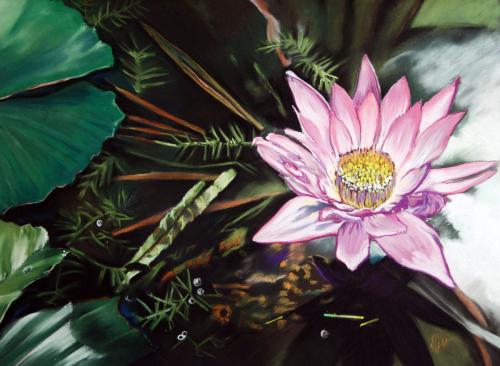 Austin Lotus
