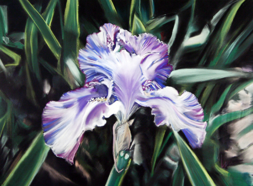 Blue Iris- Tribute to Moms
