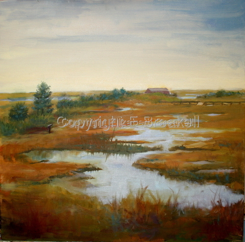 Wetlands - Stone Harbor by Elizabeth Breakell