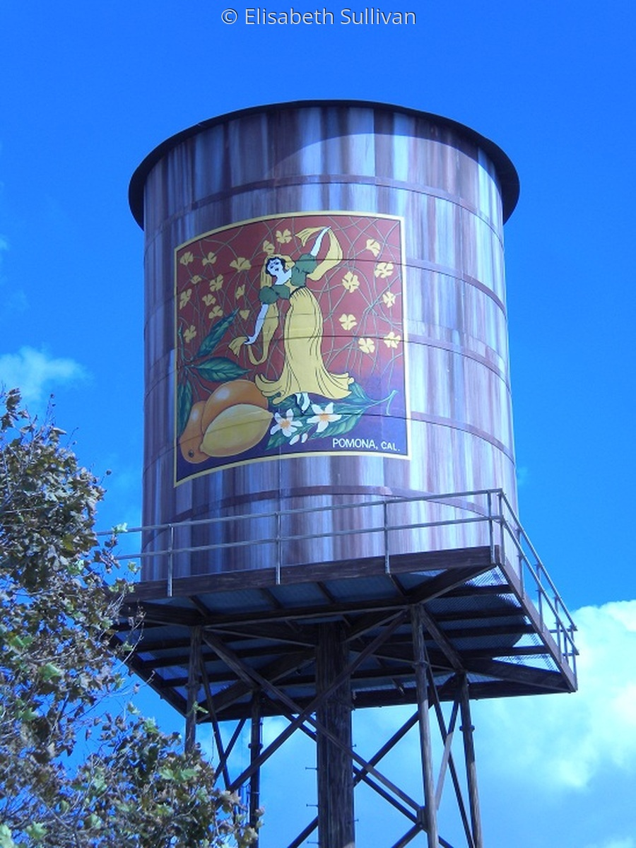 Pomona Water Tower 1 (large view)