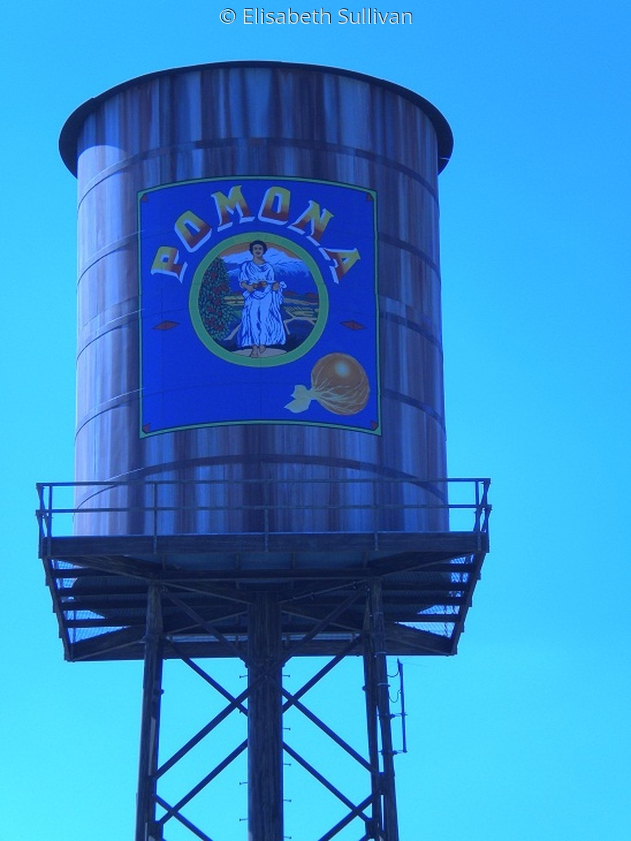 Pomona Water Tower 2 (large view)