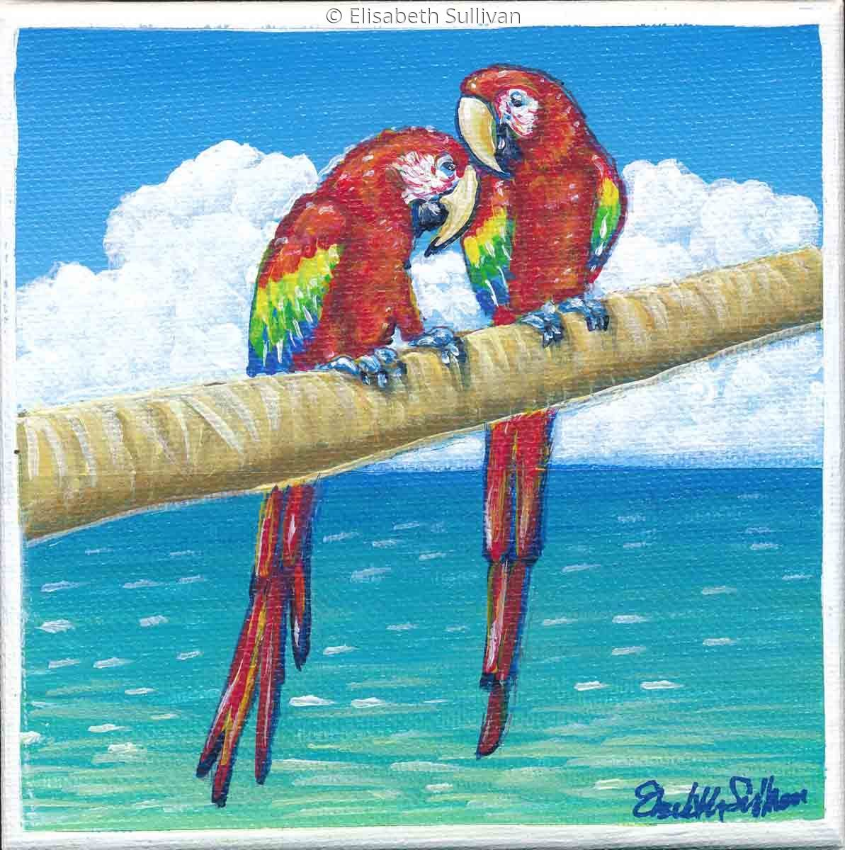 Scarlet Macaws (large view)