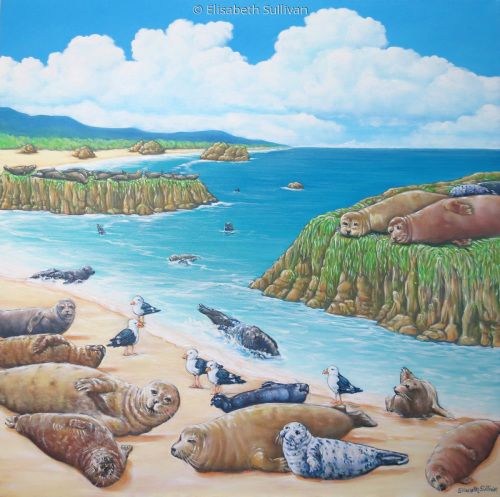 Seals (large view)
