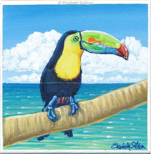 Toucan (large view)