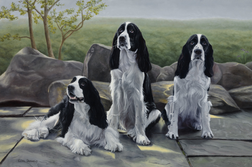 Maggie, Murphy and Morgan (large view)