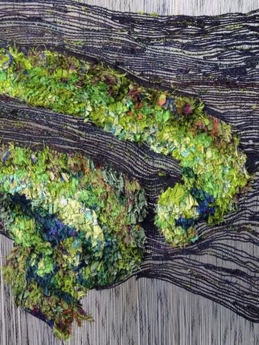Aurora Borealis, Yellowknife Detail