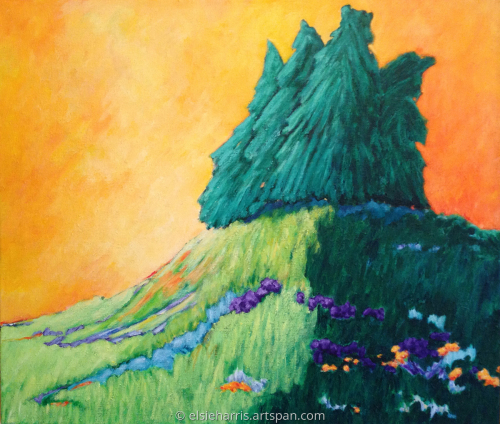 Blue Spruce Sunrise
