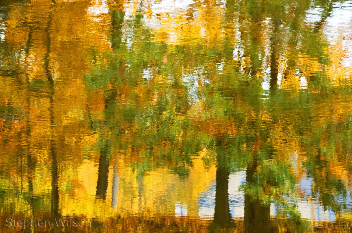 Farmington River Autumn (large view)