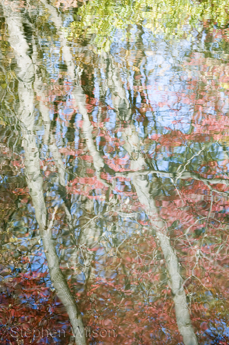 October Reflection 2