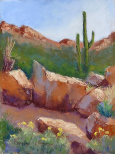 Tucson Mountain Morning