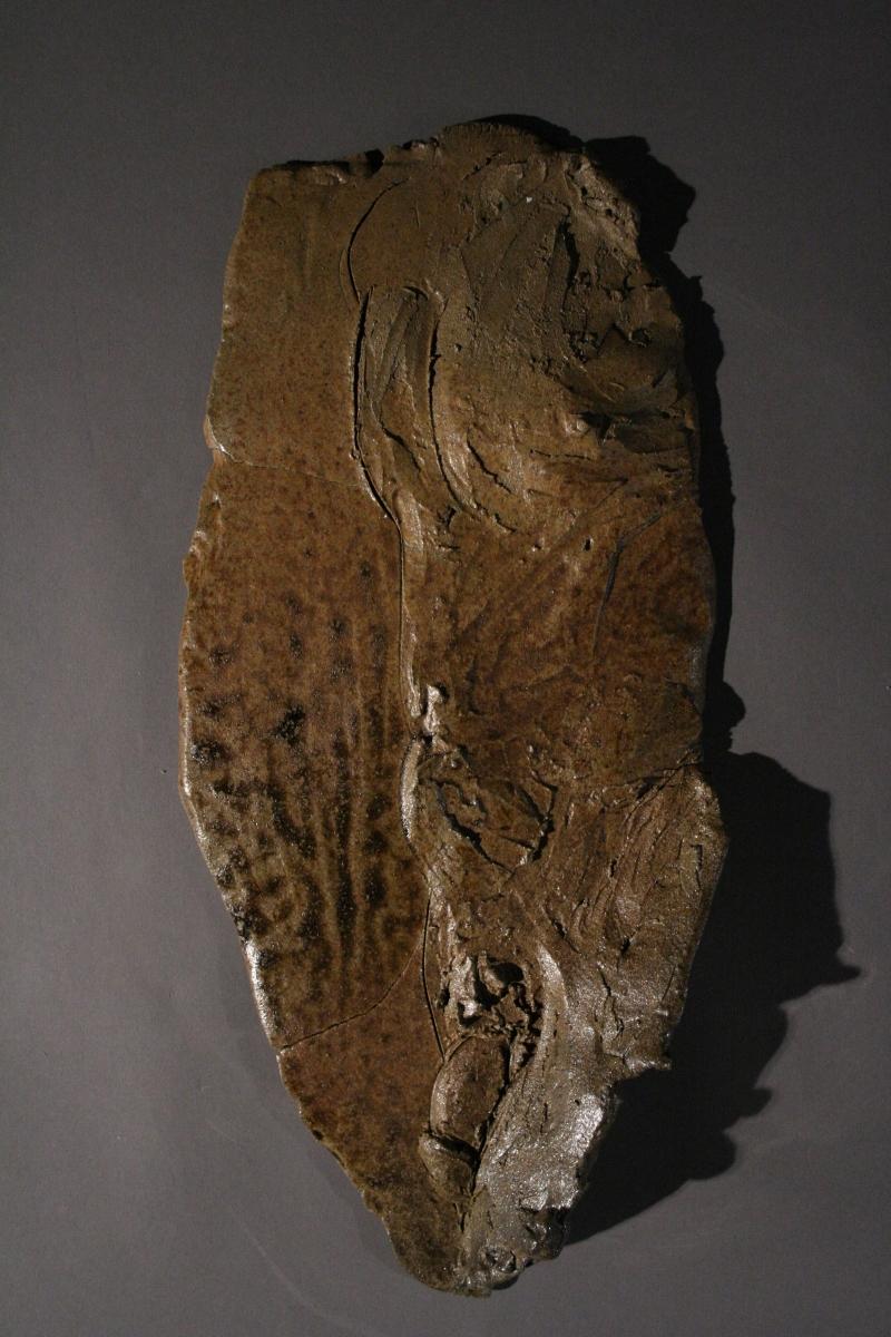 Male Torso (large view)