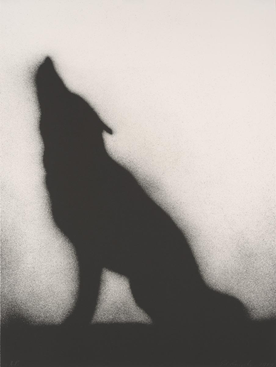 Coyote - Ed Ruscha