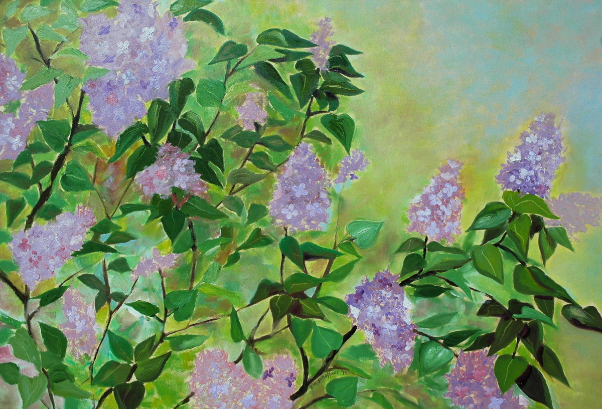 Lilacs in Bloom (large view)