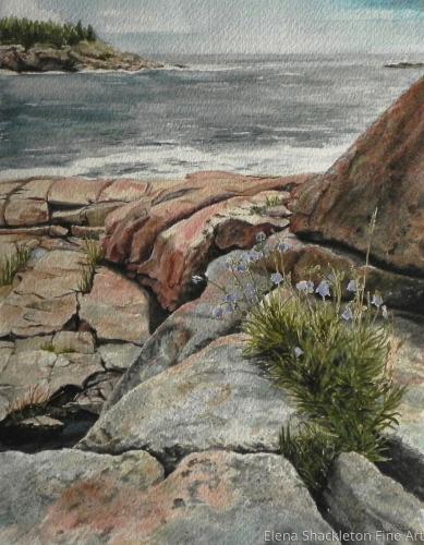 Rocky Coast, Maine