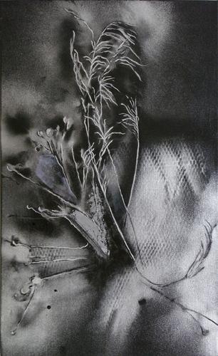 Nature Morte #1