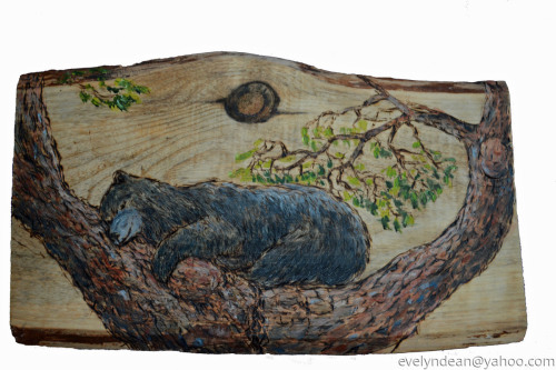 Napping Tree