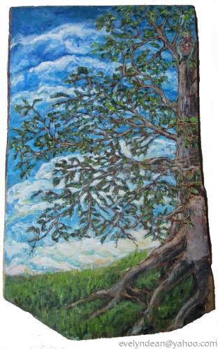Beech Tree Fairy