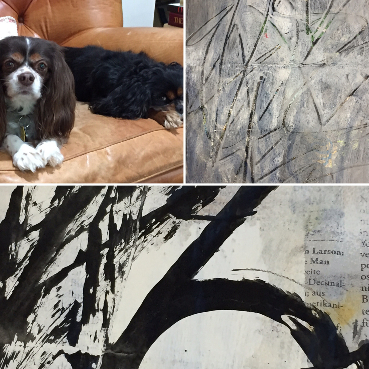 Studio mates, cosmic doodling and abstract calligraphy (large view)