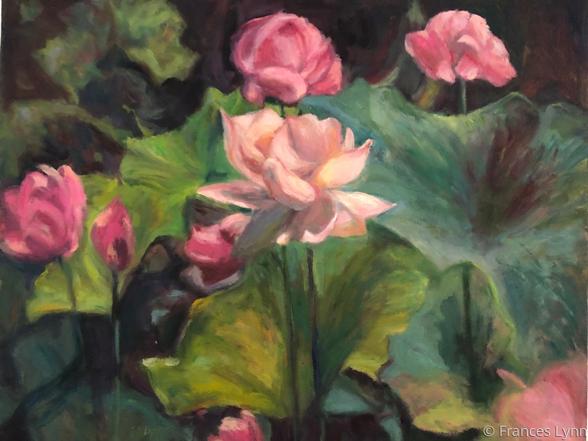 Lotus Blossom (large view)